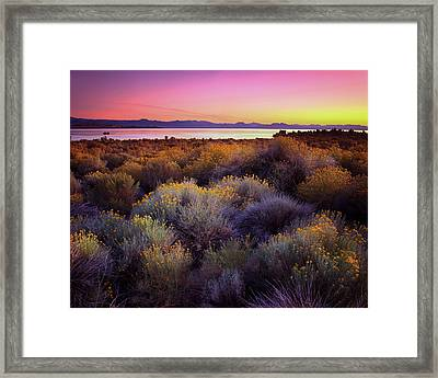 Mono Lake California Framed Print by Adonis Villanueva