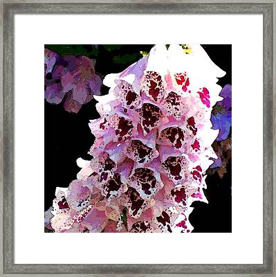 Nature Series Framed Print by Ginger Geftakys