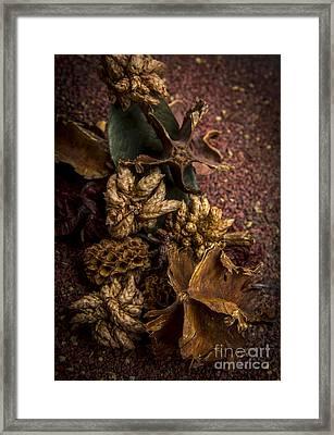 Potpourri Framed Print