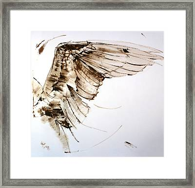 11.11 Wing Framed Print by Bill Mather