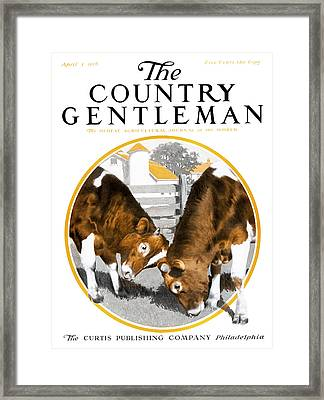 Cover Of Country Gentleman Agricultural Framed Print