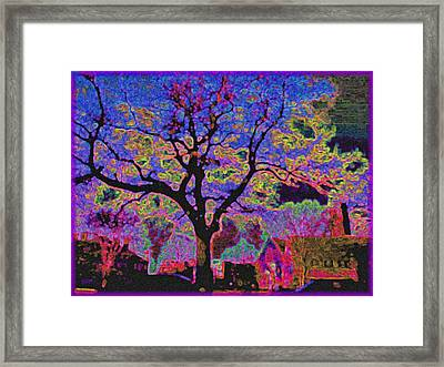 113z  Gothic  Blue Framed Print by Ed Immar