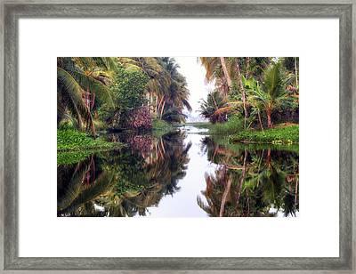 Backwaters Kerala - India Framed Print