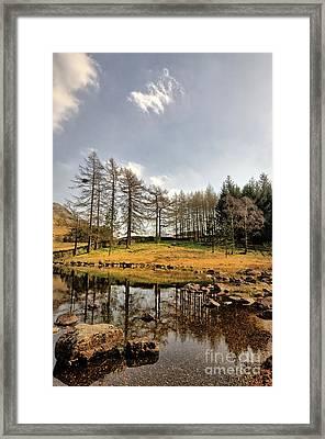 Blea Tarn Framed Print by Nichola Denny