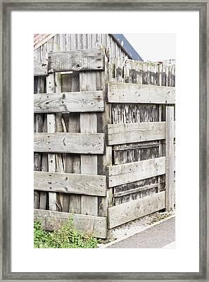 Fence Framed Print by Tom Gowanlock