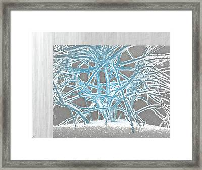 Grounded In Earth  - Series 1 Framed Print