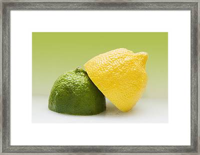 12 Organic Lemon And 12 Lime Framed Print