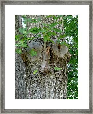 Trees I Love 13 One Who Watches Framed Print by Anna Folkartanna Maciejewska-Dyba