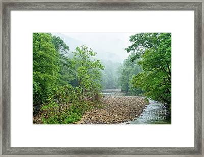Framed Print featuring the photograph Williams River Summer Mist by Thomas R Fletcher