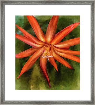 Nora Cactus Blossom Framed Print