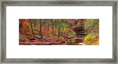 Autumn   Framed Print by Mikes Nature