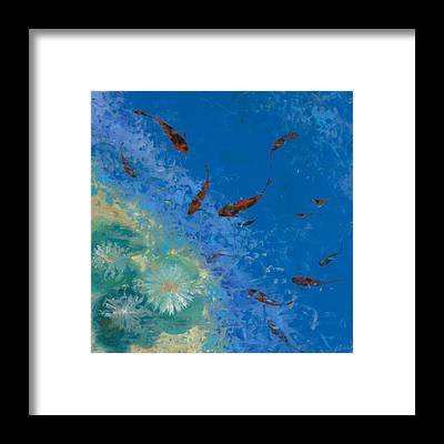 Koi Fish Framed Prints