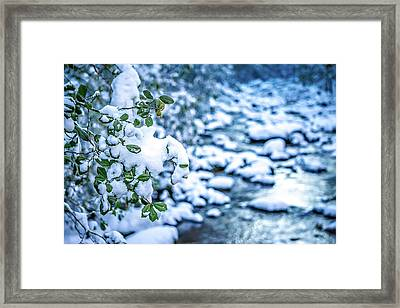 Snow And Ice Covered Mountain Stream Framed Print by Alex Grichenko