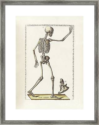 The Science Of Human Anatomy Framed Print by National Library of Medicine