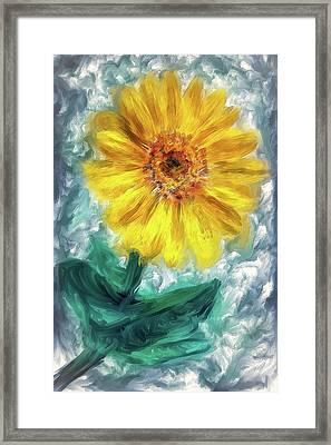 Balsam Root Blossom  Framed Print