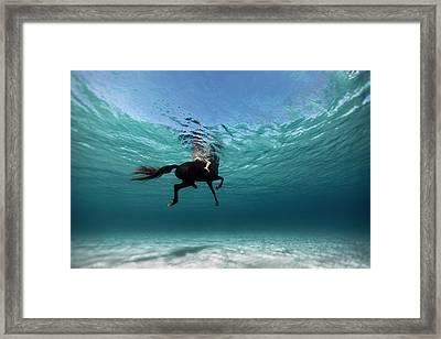 131016-8962 Framed Print