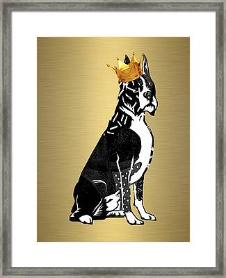 Boxer Collection Framed Print