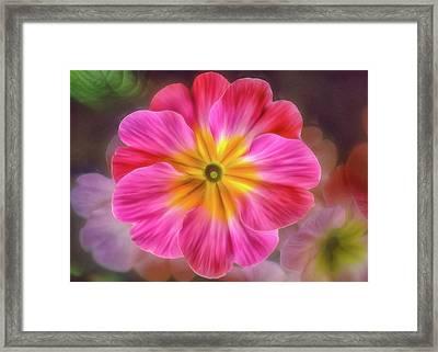 Pink Primrose #1 Framed Print