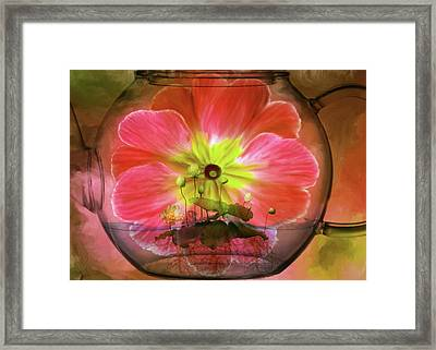 Looking Through Framed Print
