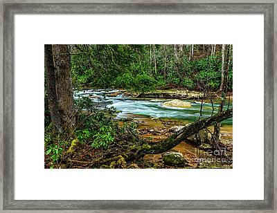 Framed Print featuring the photograph Back Fork Of Elk River by Thomas R Fletcher