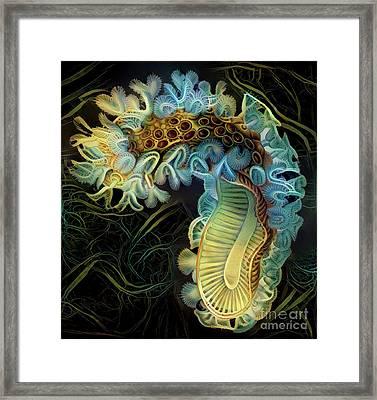 Beautiful Undersea Coral Framed Print