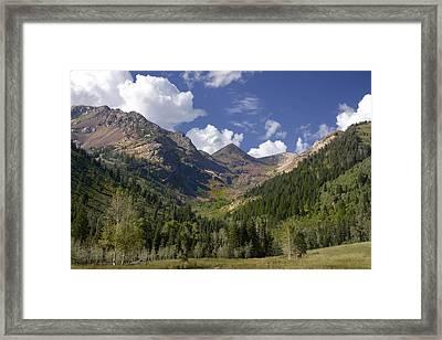 Mountain Meadow Framed Print by Mark Smith
