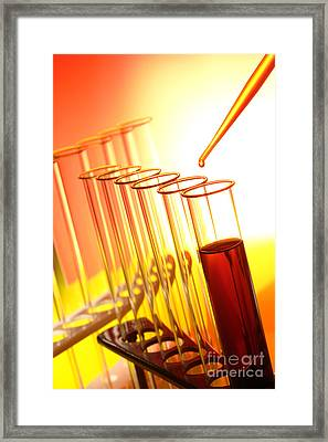 Scientific Experiment In Science Research Lab Framed Print by Olivier Le Queinec