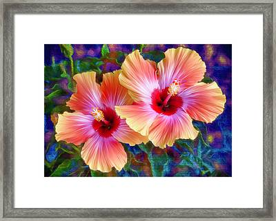 Hibiscus Duo Framed Print