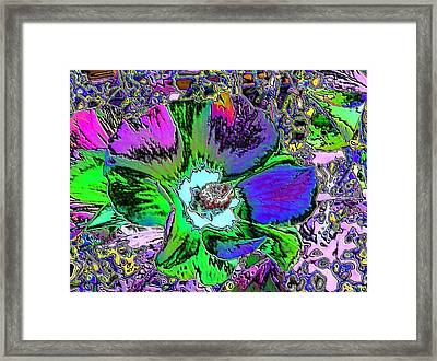 Abstract Flowers Framed Print by Belinda Cox