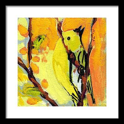 Sparrow Framed Prints