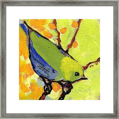 16 Birds No 2 Framed Print by Jennifer Lommers