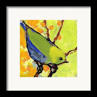 Wildlife Framed Prints