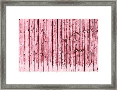 Fence Panels Framed Print by Tom Gowanlock