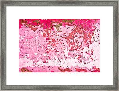 Peeling Paint Framed Print by Tom Gowanlock