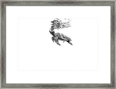 160526-5803 Framed Print