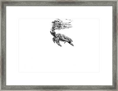 160526-5803 Framed Print by 27mm
