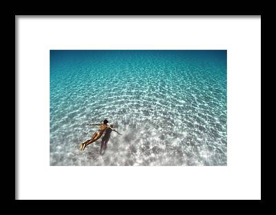 Swim Framed Prints