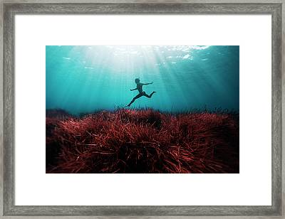 160710-3376b Framed Print by 27mm