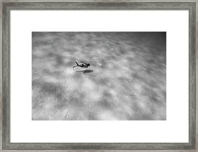 160815-8353 Framed Print by 27mm