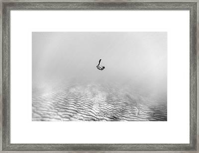 160819-8644 Framed Print by 27mm