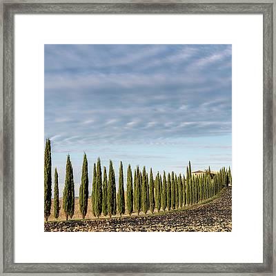 1610120181 Framed Print by Jaime Dormer
