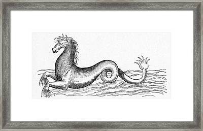 16th Century French Engraving Framed Print by Cci Archives