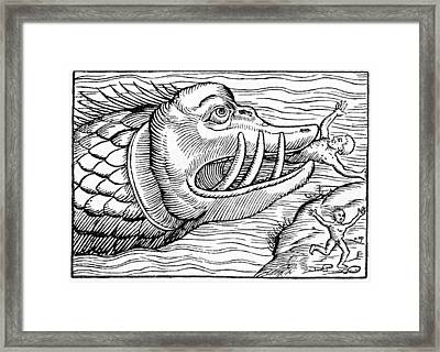 16th Century Woodcut Print Framed Print by Cci Archives
