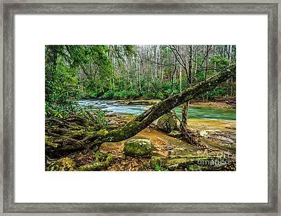 Back Fork Of Elk River Framed Print by Thomas R Fletcher