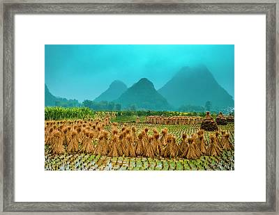 Beautiful Countryside Scenery In Autumn Framed Print