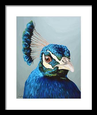 Peacock Framed Prints