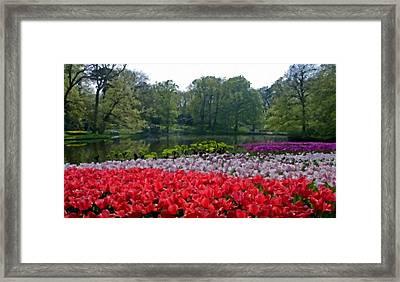 W H Landscape Framed Print