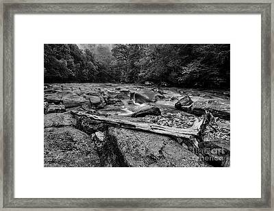 Framed Print featuring the photograph Williams River Summer by Thomas R Fletcher
