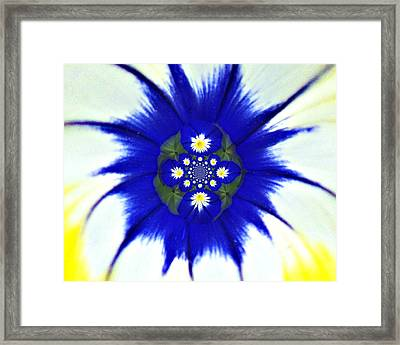 186 Abstract 1 Framed Print