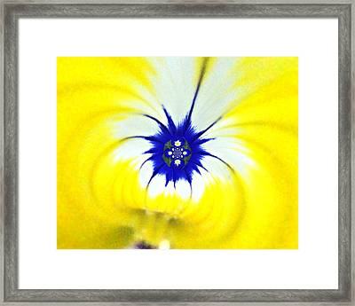 186 Abstract 2 Framed Print